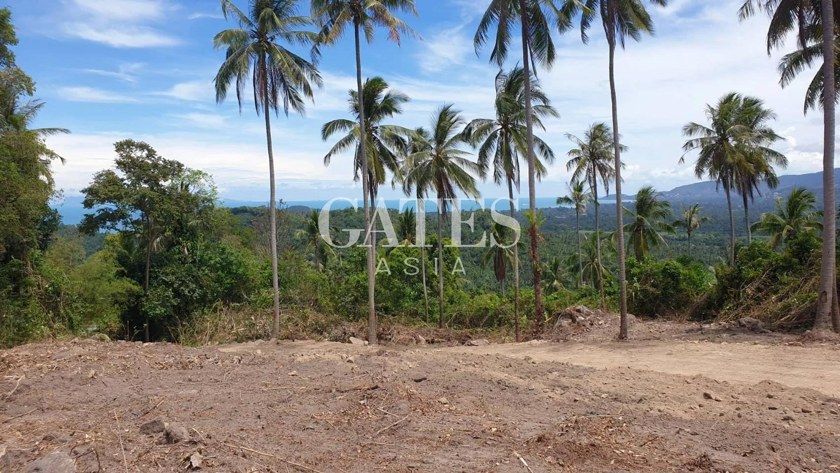 AFFORDABLE SEA VIEW LAND IN TALING NGAM L-S-TN-22